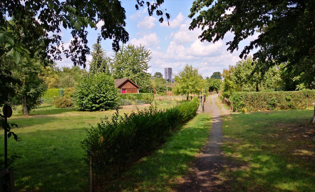 Kleingartenverein Fortschritt- Weg